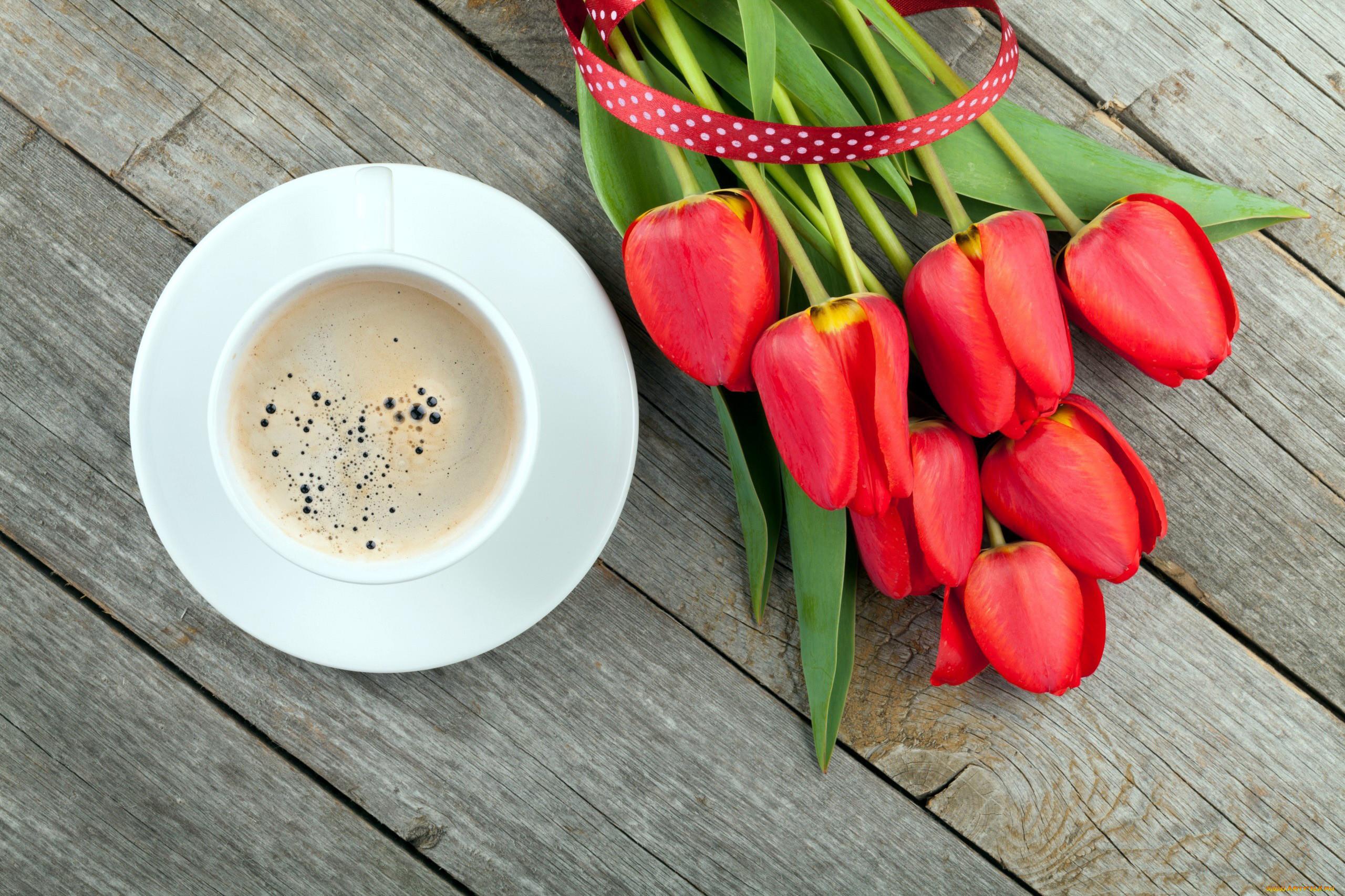 чашка с тюльпанами открытка недвижимости санкции